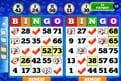 bingo-haven